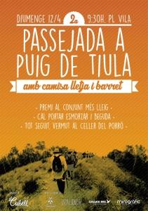 CARTELL-PUIG-DE-TIULA-2015-WEB